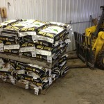 seed on pallet