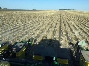 planting soybeans rear view