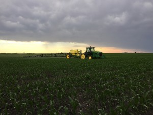 Post Emerge Corn Spraying 2015