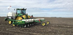 planting corn follow