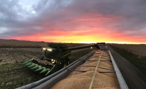 combine-truck-of-corn-sunset-photo
